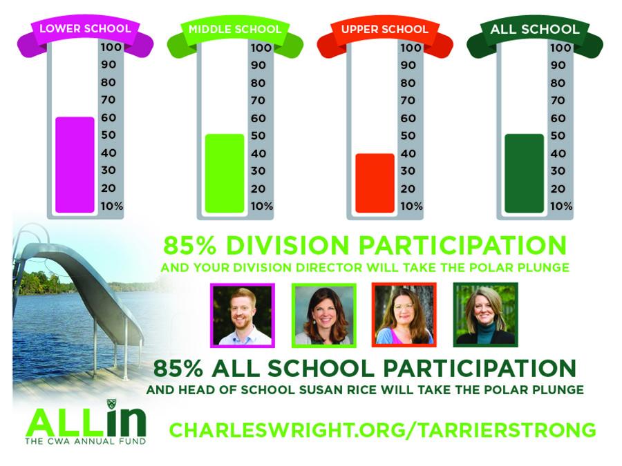 Participation chart 11-17-20